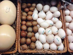 Cât de mult să depozitezi ouăle
