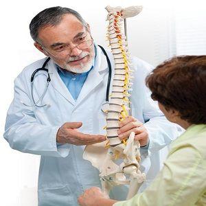 Descrierea caracteristicilor structurii coloanei vertebrale umane
