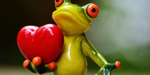 Ce amfibieni au o inima cu trei camere?