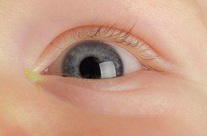 Ochii uimiți ai copilului