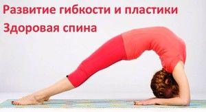 Exerciții pentru spate - crește flexibilitatea corpului