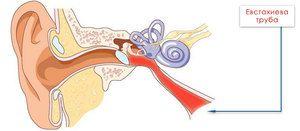 Cauze de senzație de bule în urechi