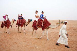 Camelia merge într-un vis