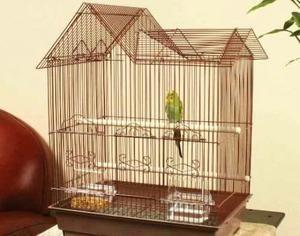 Cage pentru un papagal
