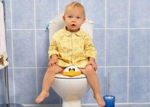 Alegerea unui scaun pentru toaletă pentru un copil
