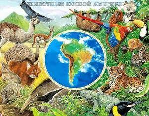 Animalele care trăiesc în America de Sud